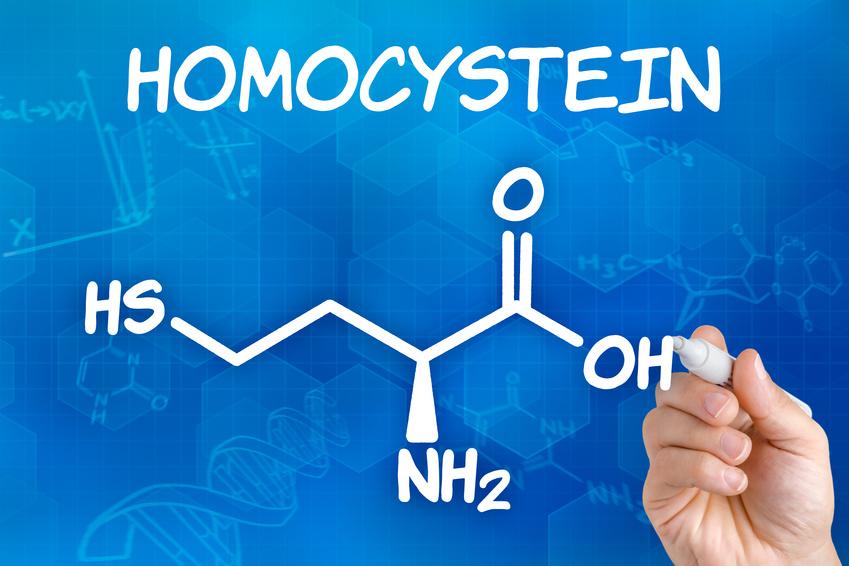 Homocystein - Synervit um den Spiegel zu senken